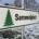 sammelplatz für weihnachtsbaeume | KOLLAXO