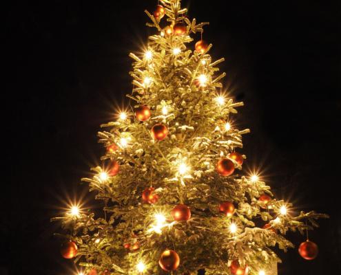 Weihnachtsbaum beleuchtet | Stoll