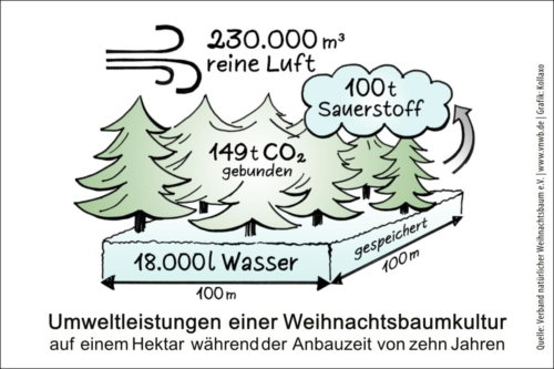 VNWB Grafik Umweltleistungen 1