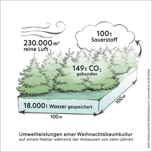 VNWB Grafik Umweltleistungen 2